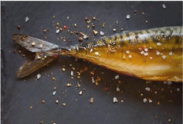 Le Grand Lejon fumaison morue saumon